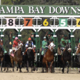 Tampa Bay Downs