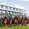 Hawthorne-Racecourse