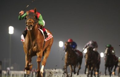 Bet Dubai World Cup Odds