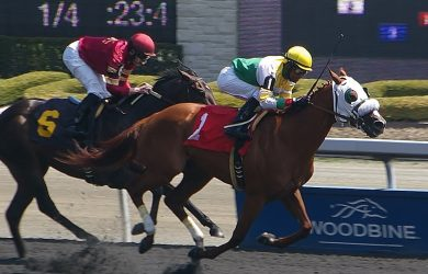 Woodbine Star Shoot Stakes