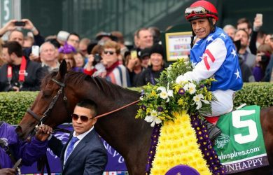 Runhappy in the winner's circle after the Breeders' Cup Sprint (photo from the Houston Chronicle)
