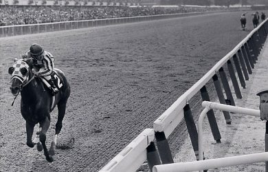 Secretariat winning the Belmont Stakes by 31 lengths (photo via Secretariat.com).