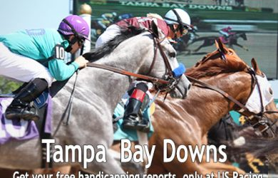 Tampa Bay Downs Horse Betting