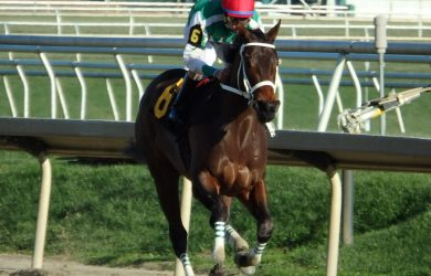 Cathryn Sophia (photo from www.theracingbiz.com)