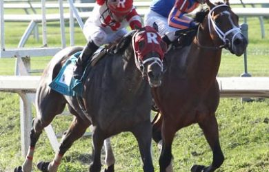 International Star winning the 2015 Louisiana Derby (via www.americasbestracing.net)
