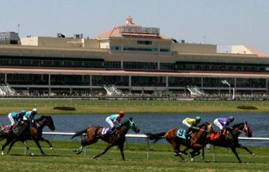 Horseracing | Daily Racing News | Horse Racing News - Part 6