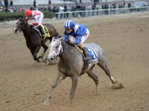Mohaymen winning the Remsen (photo via www.horseracingnation.com)