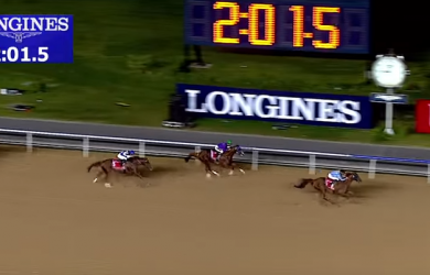 California Chrome looks to avenge his loss in the 2015 Dubai World Cup, in which he finished second to Prince Bishop.