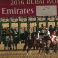 California Chrome gets ready to load into the gate prior to his victory in the 2016 Dubai World Cup.