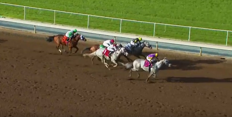 Kobe's Back made a first-to-last charge to lead a brigade of gray in the San Carlos at Santa Anita Park on Saturday.