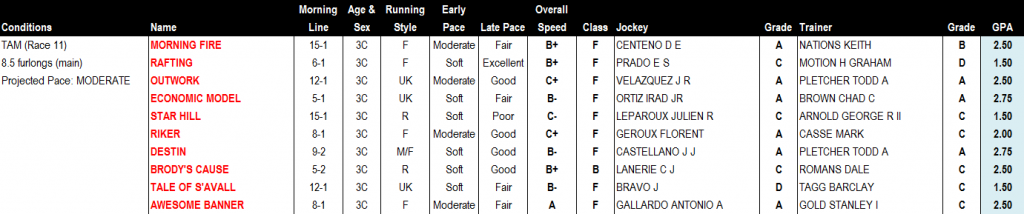 Tampa Bay Derby Report Card