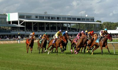 Horses round the clubhouse turn at Tampa Bay Downs (photo via www.tampabay.com)