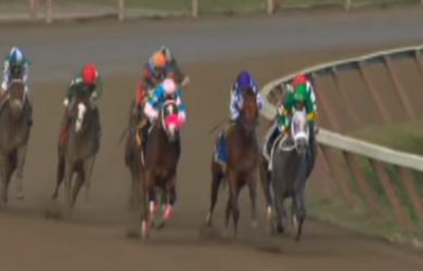 Stonetastic leads the field home in the 2014 Prioress Stakes.