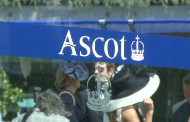Ascot11