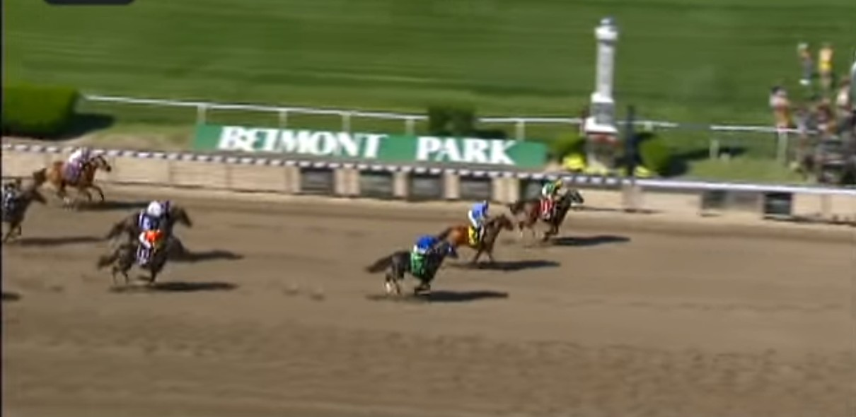 Palace Malice capturing the 2014 Met Mile.