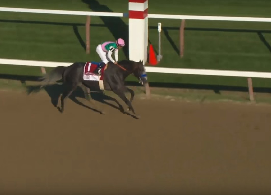 Arrogate winning the 2016 Travers Stakes.