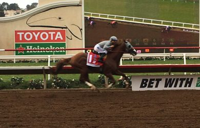 California Chrome storms home in the Pacific Classic, remaining undefeated in 2016.