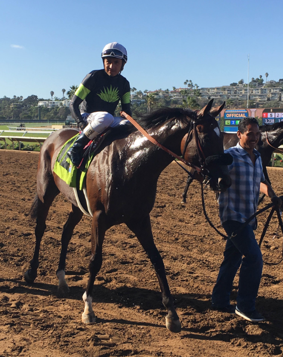 Bowies Hero after capturing the $102,760 Del Mar Juvenile Turf Championship.