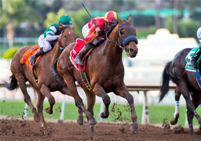 Hoppertunity uncorks his patented late run down the lane to win the San Antonio Stakes at Santa Anita Park on Saturday (photo via Benoit Photo).