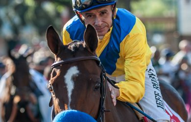 Vale Dori and jockey Mike Smith (photo by Jim Safford).