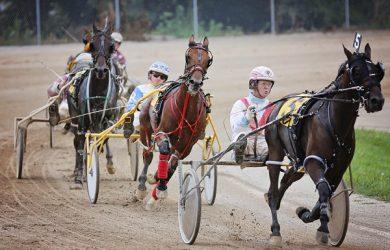 harnessracers