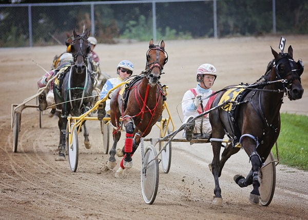 Harness-Racers