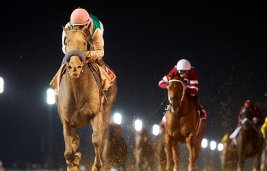 Arrogate winning the Dubai World Cup (photo by Andrew Watkins).