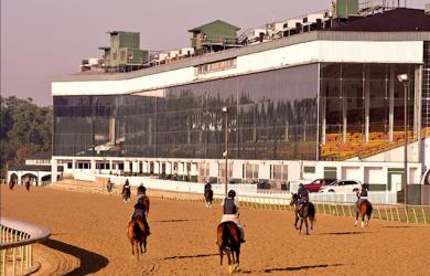 Laurel-Park-horseracing-tracks