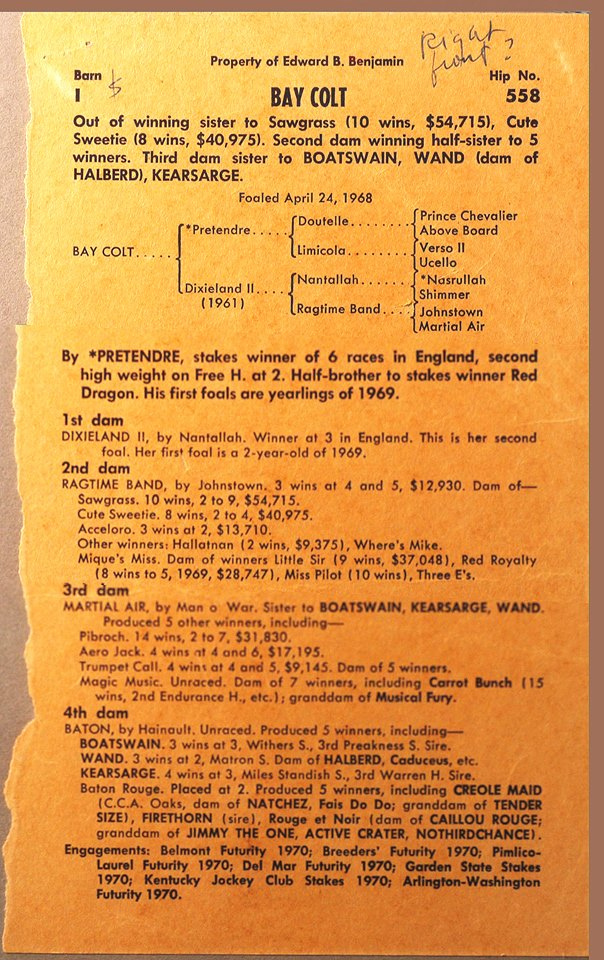 Cot Campbell' notes on Hip #558 at the 1969 Keeneland Sales.