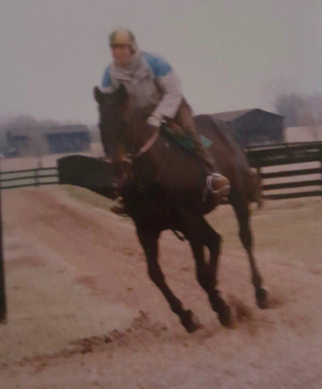 Seattle-Slew2_Wes-Lanter