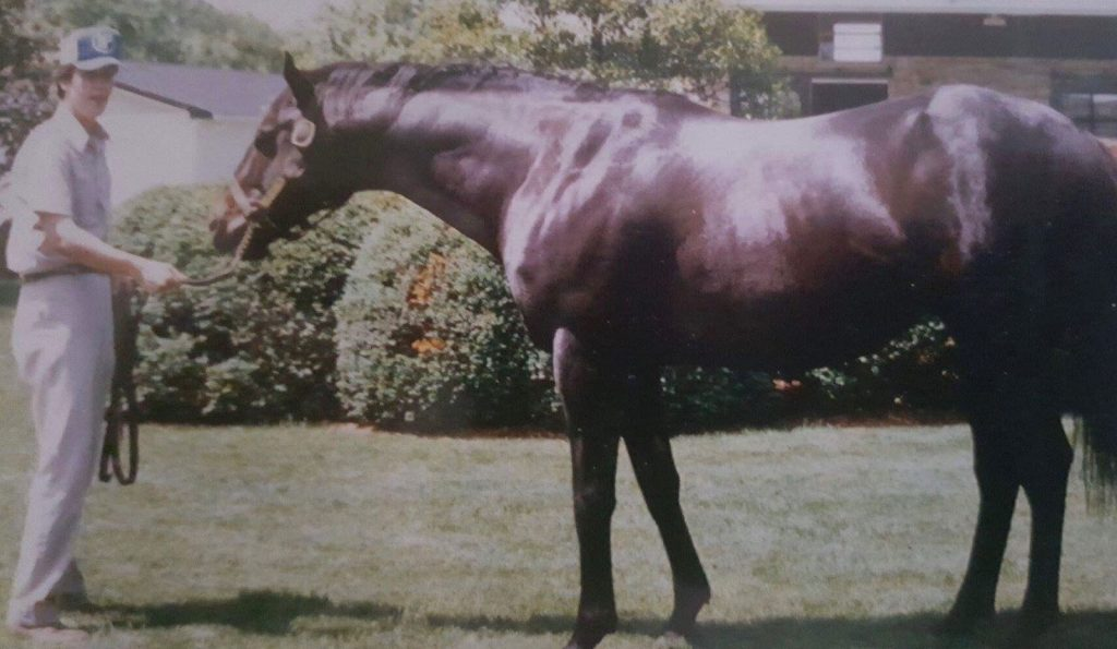Seattle-Slew3_Wes-Lanter