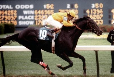 A son of the great Seattle Slew, Swale won the 1984 Kentucky Derby (photo via Aiken Racing Hall of Fame).