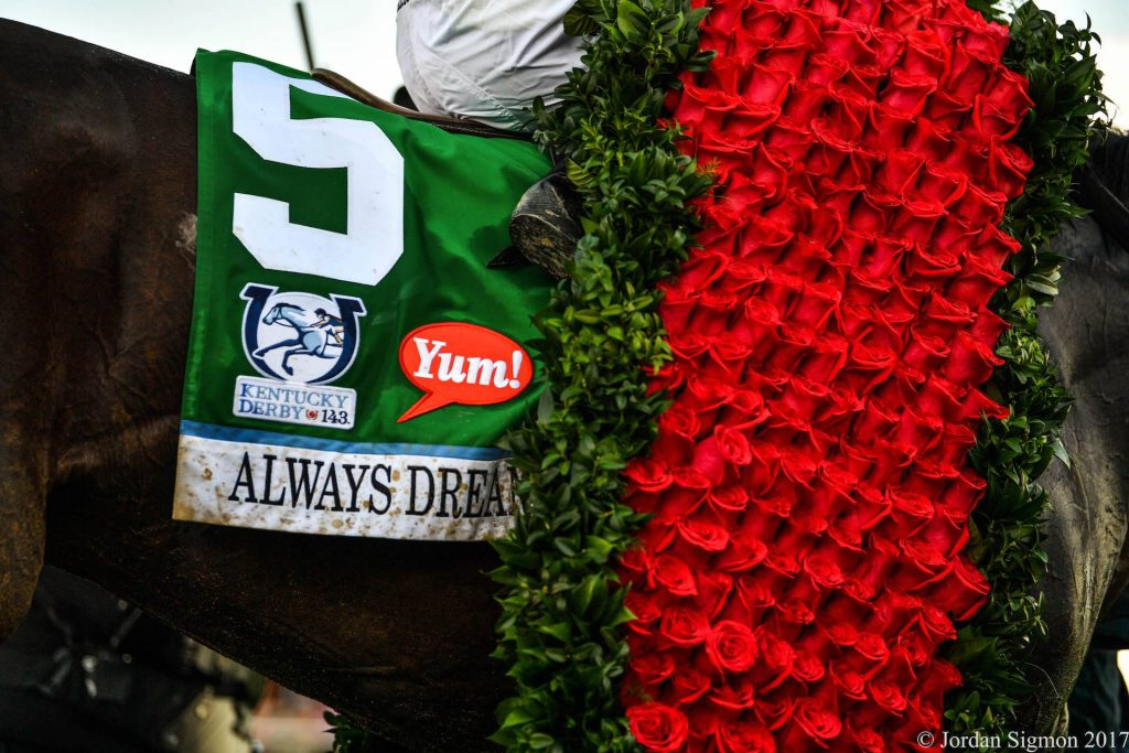 Always Dreaming draped in roses following the running of the 143rd Kentucky Derby (photo by Jordan Sigmon).