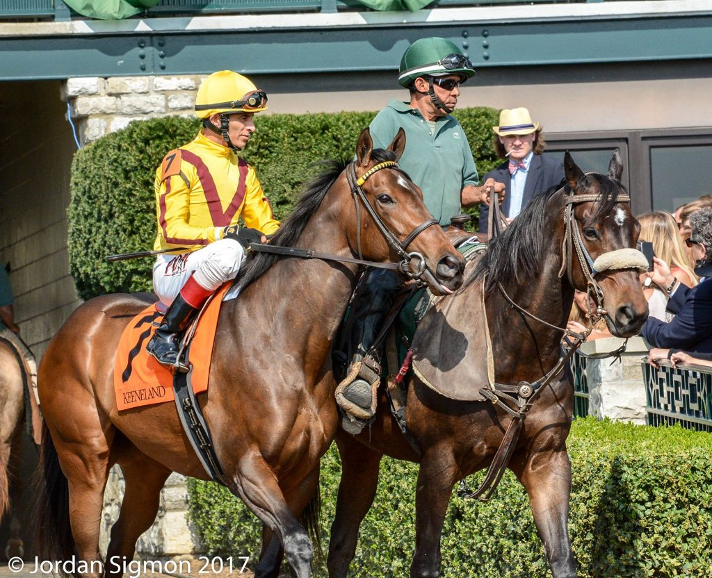 Lady Aurelia (photo by Jordan Sigmon).