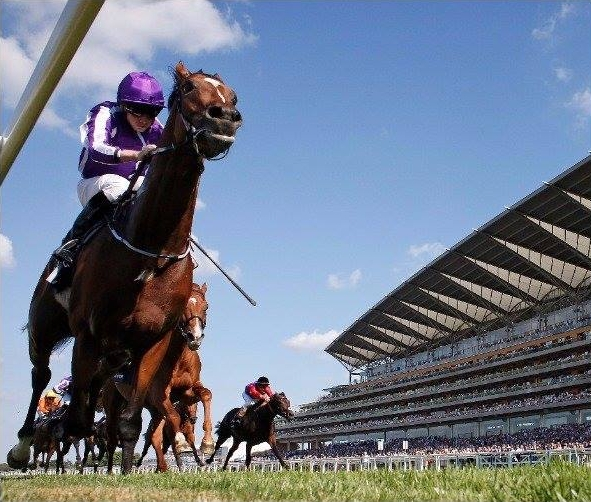Highland Reel winning the Prince of Wales's Stakes (photo via Ascot Racecourse).