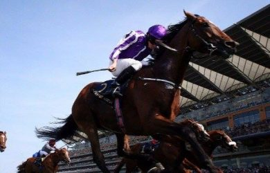 Highland-Reel_Ascot-Racecourse2