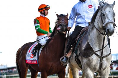 Battle of Midway will face six battle-hardened foes in the Haskell Invitational at Monmouth Park on Sunday (photo by Jordan Sigmon).