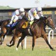 Dona-Bruja_Keeneland-Racecourse