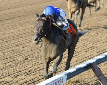 Elate won the Alabama Stakes in convincing fashion (photo via NYRA).