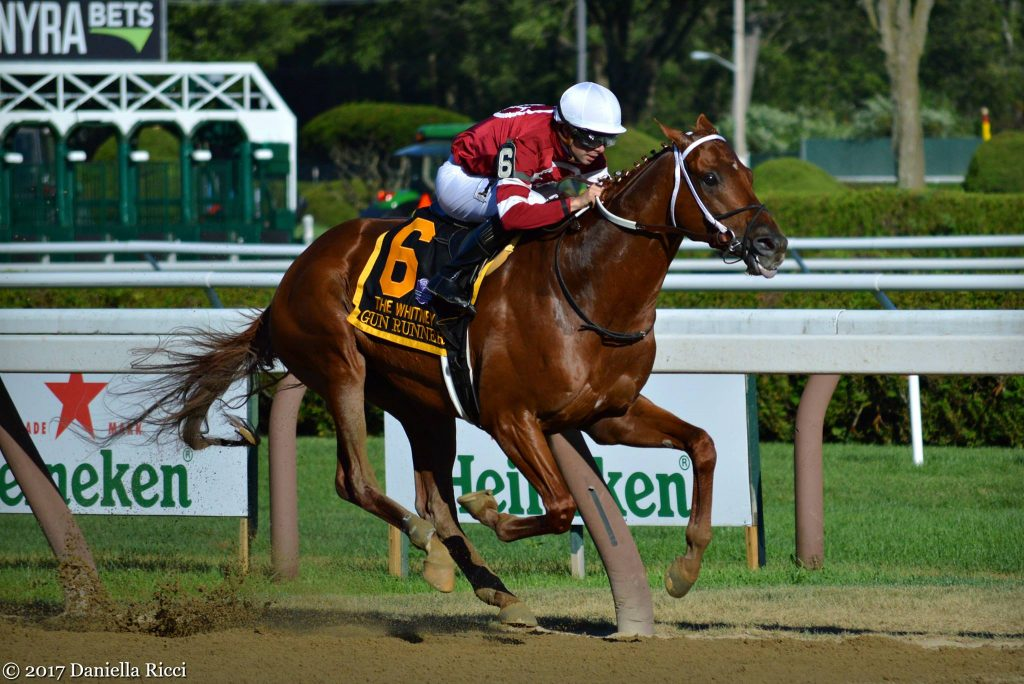 Gun Runner (photo by Daniella Ricci).