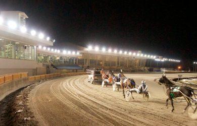 Buffalo-Raceway