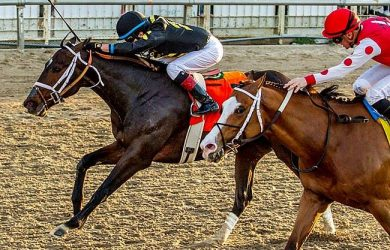 Bravazo (black silks) edges Snapper Sinclair in the Risen Star Stakes at Fair Grounds on Saturday (photo by Hodges Photography).