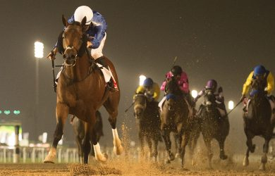 Thunder Snow (photo courtesy of Dubai Racing Club).