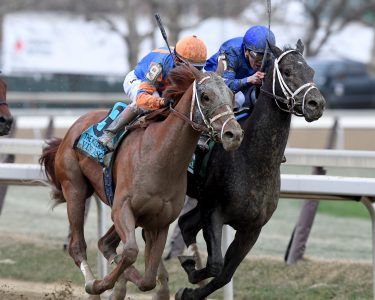 Vino Rossi outduels Enticed to win the Wood Memorial (photo by Viola Jaska/NYRA).