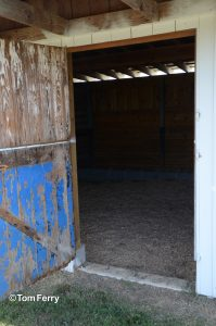 Some of the original blue paint is still visible on Secretariat's foaling shed (photo by Tom Ferry).