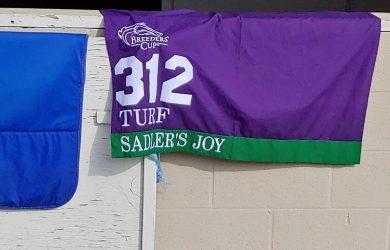 Sadlers-Joy