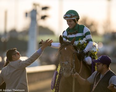 Accelerate capped off a great year with a win in the Breeders' Cup Classic (photo by Jordan Thomson).