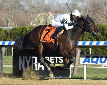 Five Star General (photo via NYRA).