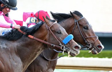 Photo via Oaklawn Park.