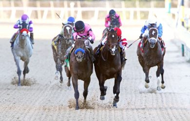 Omaha Beach (right forefront) edges Game Winner in the second division of the Rebel Stakes (photo via Oaklawn Park).